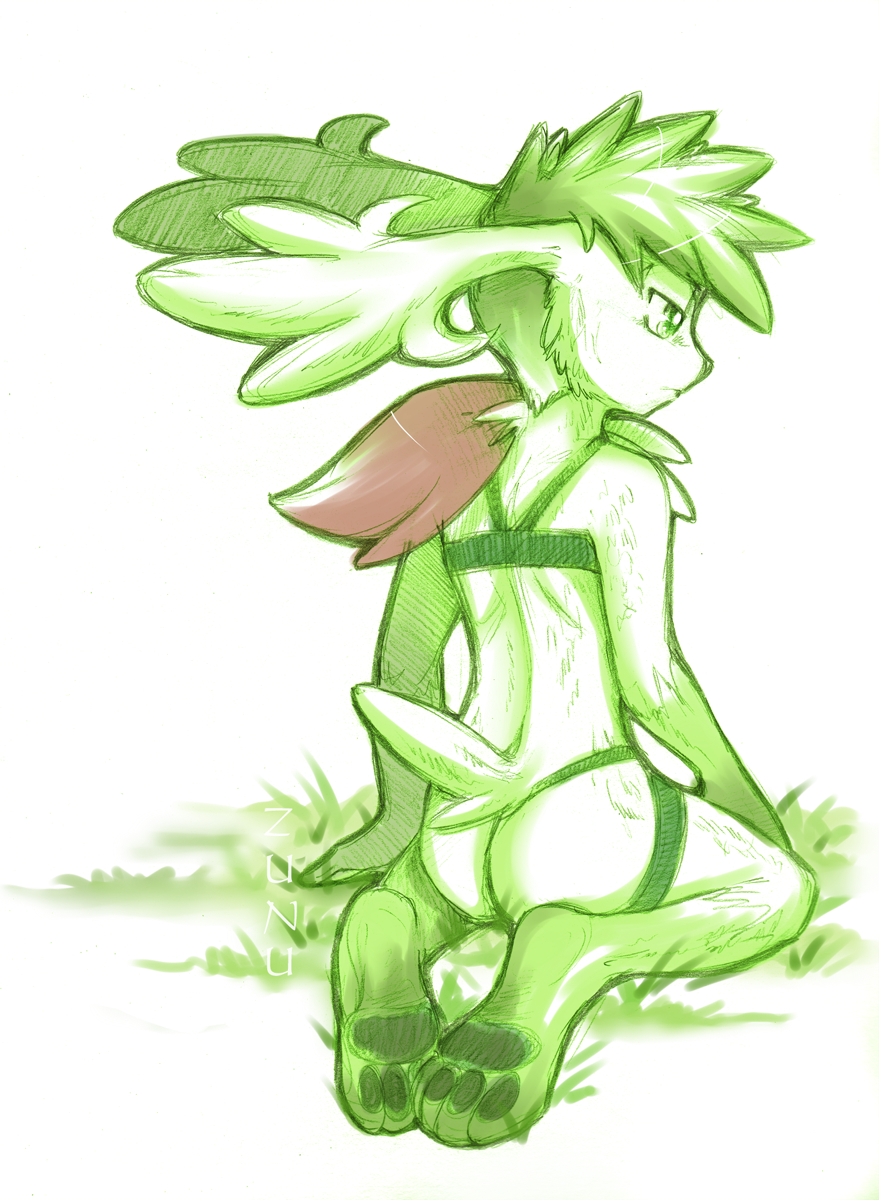 form shaymin how sky oras to get Link and the faces of evil